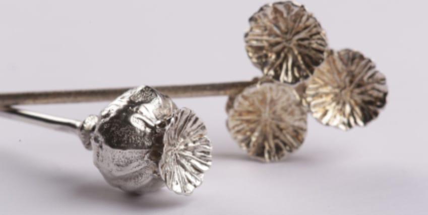 Mini collezioni istantanee riga giuliana di franco